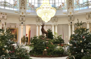Noël approche ... La Maison LAC à Nice dévoile sa Collection de bûches 2018 - Photo Mickaël Mugnaini - Mister Riviera Blog, Côte d'Azur France
