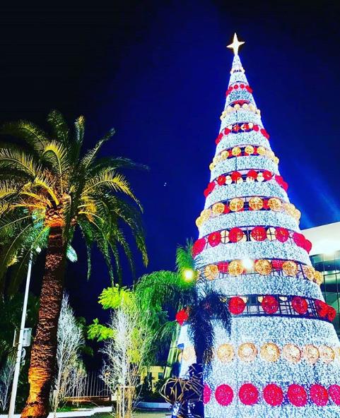 Noël à Cannes, Côte d'Azur France – Photo : @fredericguissant