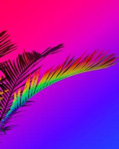 La 5ème édition du Festival OVNi débarque à Nice du 22 novembre au 1er décembre 2019 - Mister Riviera Blog, Côte d'Azur France