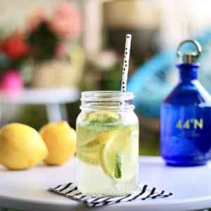 44°N, le Gin 100% Côte d'Azur de la distillerie Comte de Grasse - Mister Riviera Blog - Côte d'Azur France 2020