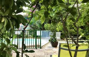 Un Jardin en Ville, le restaurant secret de l'Hôtel Windsor à Nice - Blog Mister Riviera, Côte d'Azur France