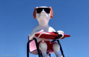 """Une plage pour les chiens à Nice, la ville la plus """"dog friendly"""" de France - Blog Mister Riviera, Côte d'Azur France"""